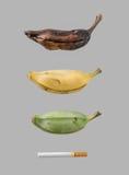 Papierosowa przyczyna więdnie banana Zdjęcia Royalty Free
