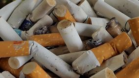 Papierosowi karcze w ashtray zdjęcie wideo