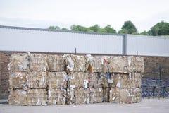 Papierowa braja kompresował bloki przy przetwarza rośliny centre w Chiny zdjęcia royalty free