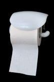 papierowa toaleta Obraz Stock