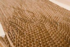 Papierowi honeycombs Obraz Stock
