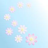 Papierowi kwiaty na błękitnym tle Zdjęcia Royalty Free