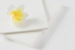 papierowy kwiatu biel Zdjęcia Stock