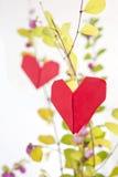 papierowy serca drzewo Fotografia Stock