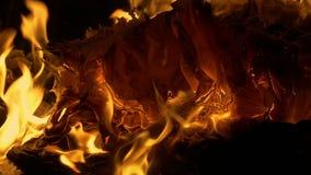 Papiers brûlant en feu banque de vidéos