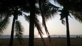 Papiers peints de ciel et de coucher du soleil de sable de mer de paysage de Silhouet Images stock