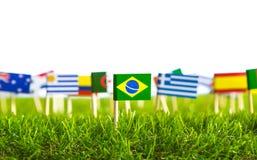 Papierschnitt von Flaggen auf Gras für Fußballmeisterschaft 2014 Lizenzfreie Stockbilder