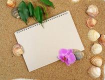 Papiersketch-book und Shells und Orchidee Stockfoto
