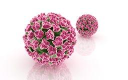 papilloma virus Stock Photo