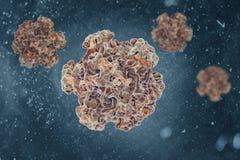 Papillomavirus Zdjęcia Royalty Free
