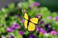Papillon artificiel sur un fond floral Photo libre de droits