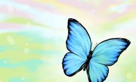 Papillon bleu dans la lumière colorée Photographie stock libre de droits