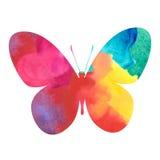 Papillon coloré d'aquarelle Photographie stock