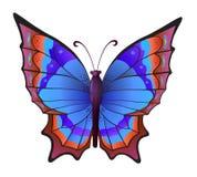 Papillon coloré de vecteur Photographie stock libre de droits