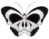 Papillon de crâne Photographie stock libre de droits