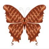 Papillon de cuivre Photographie stock