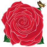 Papillon de rouge de Rose Photo stock