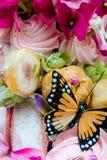 Papillon de sucrerie (1) Photographie stock