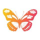 Papillon de vecteur Élément de conception illustration libre de droits