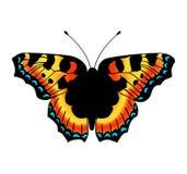 Papillon de vecteur Images stock