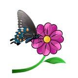 Papillon et fleur illustration stock