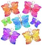 Papillon floral fait à partir de la fleur de glaïeul Photo libre de droits
