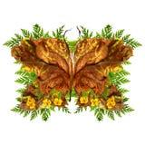 Papillon floral fait de fleurs et feuilles Images stock