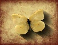 Papillon grunge avec l'ombre Images stock