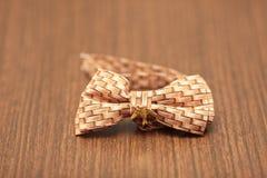 Papillon-lien Photographie stock