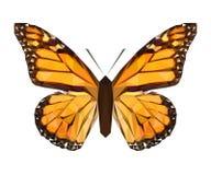 Papillon polygonal de couleur de vecteur Insecte de triangle illustration de vecteur