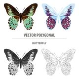Papillon polygonal de couleur de vecteur Insecte de triangle illustration libre de droits