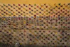 Papillon prêt à voler Photographie stock