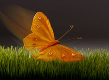 Papillon surréaliste. photo stock