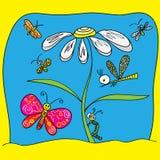 Papillons avec des mouches autour d'une grande camomille Photo libre de droits