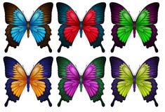 Papillons colorés Images libres de droits