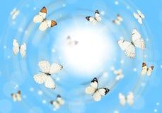 Papillons 3D Photo libre de droits