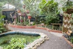 Papillons dans une oasis écologique Images libres de droits