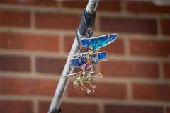 Papillons de jouet Photographie stock