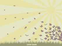 Papillons de vol sur un paysage vert Photos libres de droits