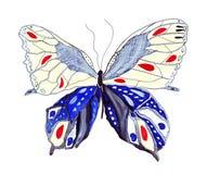 Papillons dessinés par croquis d'illustration Photographie stock libre de droits