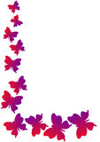 Papillons faisants le coin de cadre illustration stock