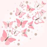 Papillons - illustration. Photographie stock libre de droits