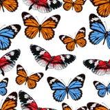 Papillons modèle sans couture, fond de vecteur Insectes multicolores lumineux sur un contexte blanc Pour la conception de tissu,  Photographie stock libre de droits