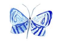 Papillons tirés par la main d'illustration de différents modèles Photographie stock libre de droits
