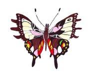 Papillons tirés par la main d'illustration de différents modèles Images libres de droits