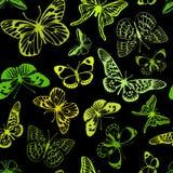 Papillons verts Photo libre de droits