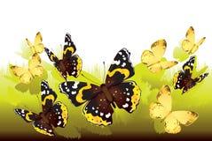 Papillons volant hors de l'herbe illustration de vecteur