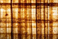 Papiro 1 Fotos de Stock