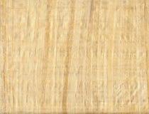 Papiro Imagens de Stock Royalty Free