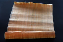 papiro fotos de stock